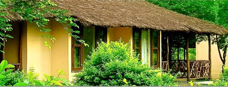 jims-jungle-resort