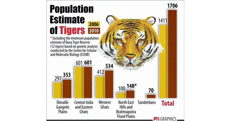 tiger-population