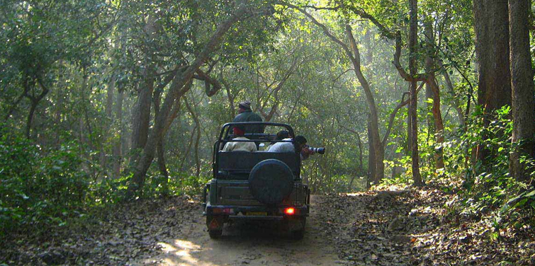 corbett-jeep-safari