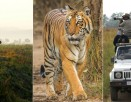 Dhikala Tour Package