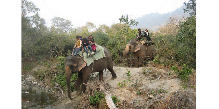 corbett-elephant-safari2